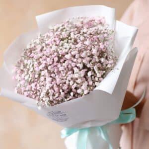 Гипсофила Розовая 7 шт №1168 - Фото 14